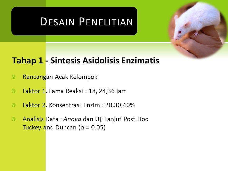 Tahap 1 - Sintesis Asidolisis Enzimatis