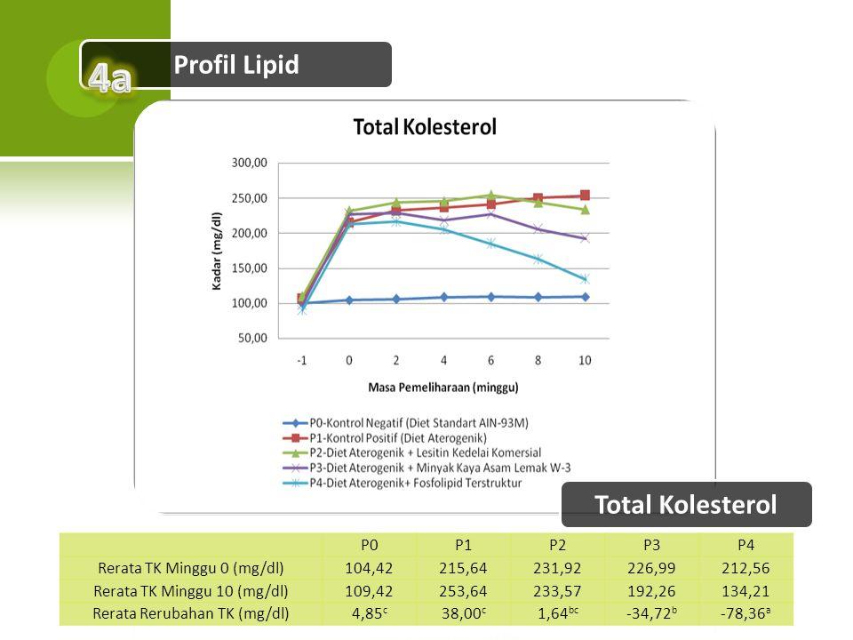 4a Profil Lipid Total Kolesterol P0 P1 P2 P3 P4