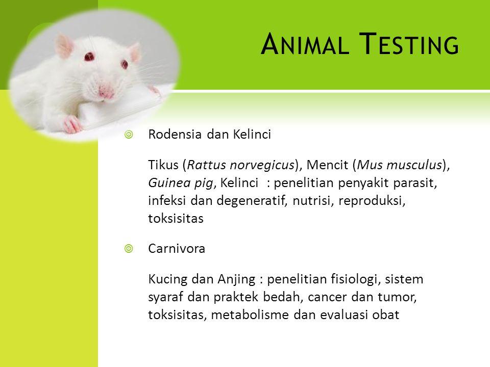 Animal Testing Rodensia dan Kelinci