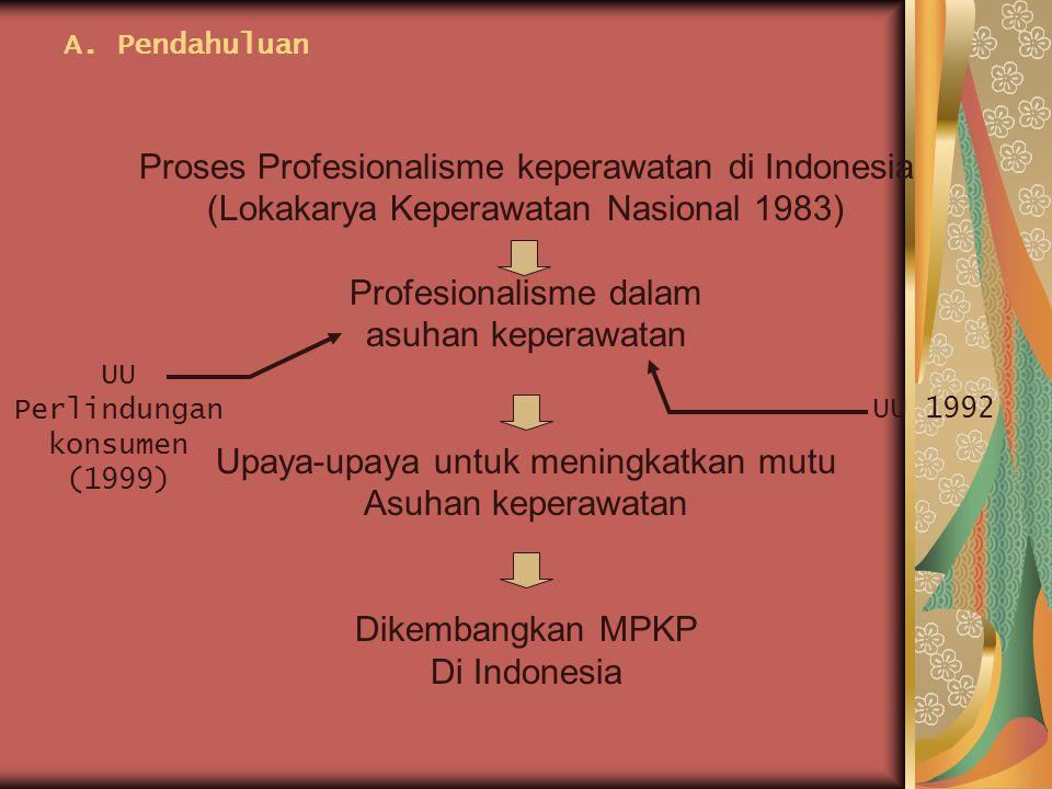 Proses Profesionalisme keperawatan di Indonesia