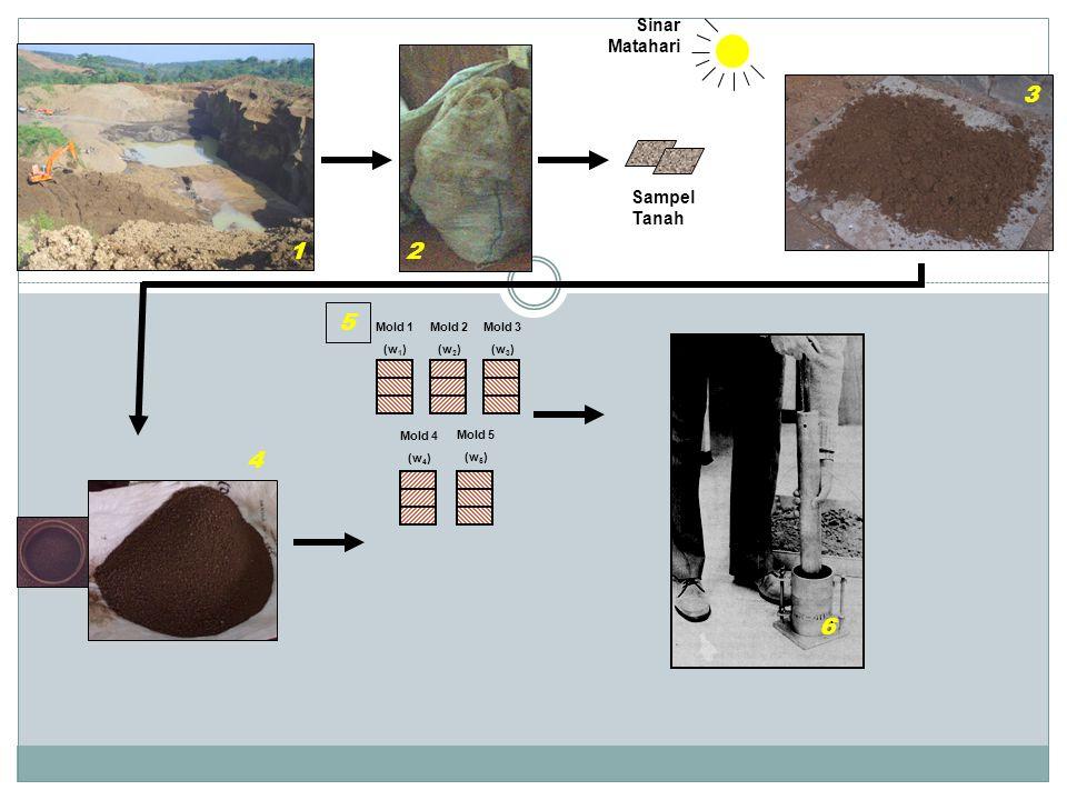 3 1 2 5 4 6 Sinar Matahari Sampel Tanah Mold 1 (w1) Mold 2 (w2) Mold 3