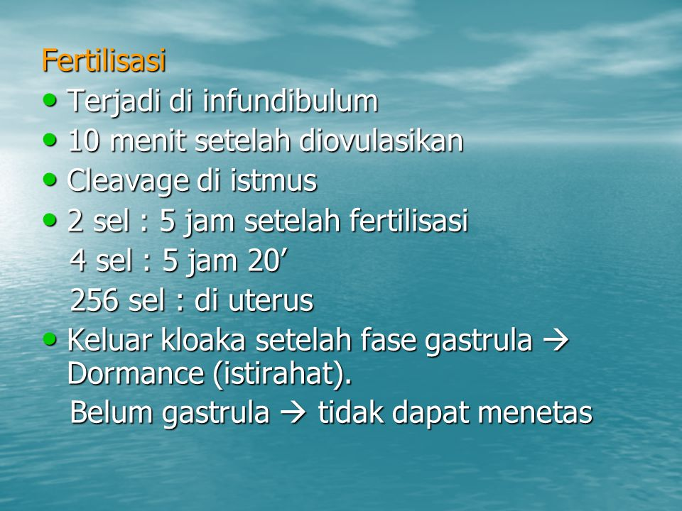 Fertilisasi Terjadi di infundibulum. 10 menit setelah diovulasikan. Cleavage di istmus. 2 sel : 5 jam setelah fertilisasi.