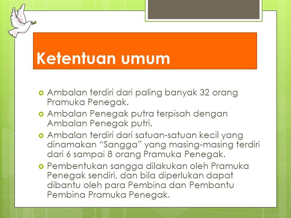 Ketentuan umum Ambalan terdiri dari paling banyak 32 orang Pramuka Penegak. Ambalan Penegak putra terpisah dengan Ambalan Penegak putri.