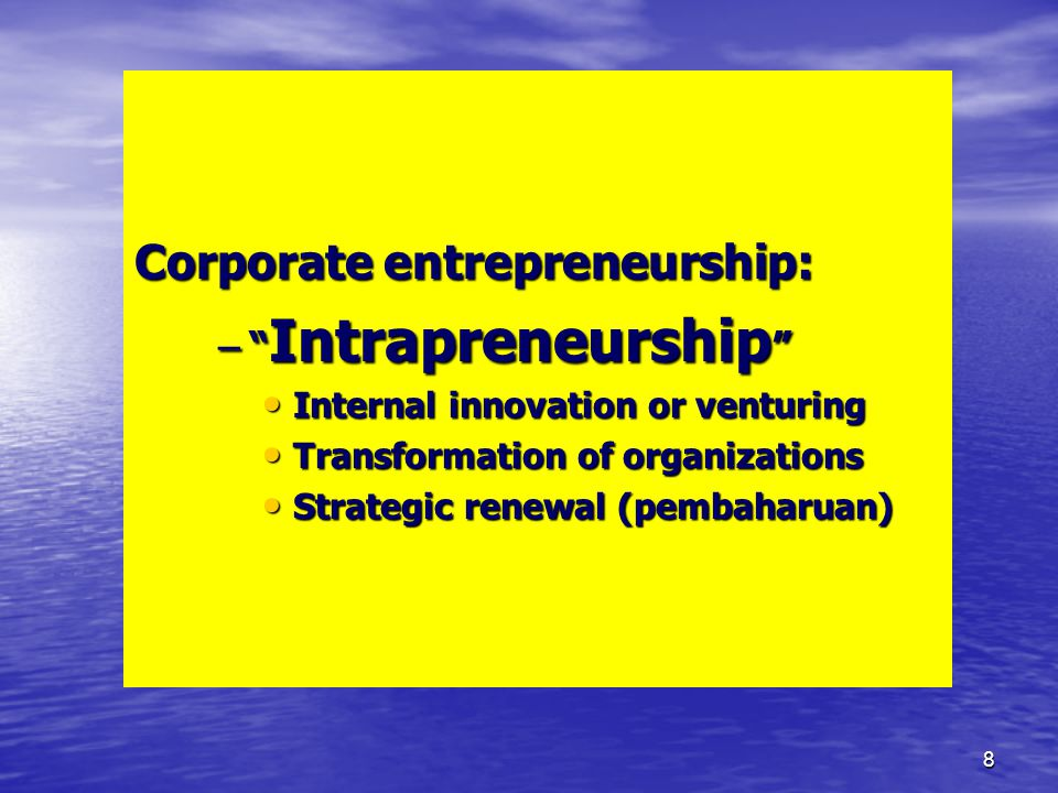 Corporate entrepreneurship: