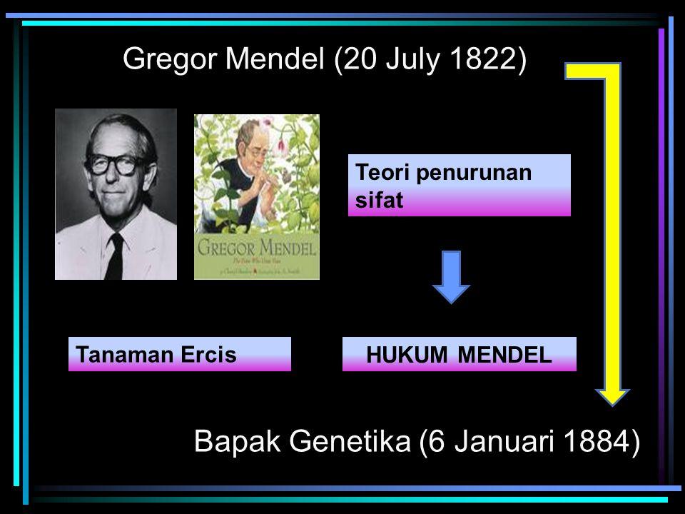 Bapak Genetika (6 Januari 1884)