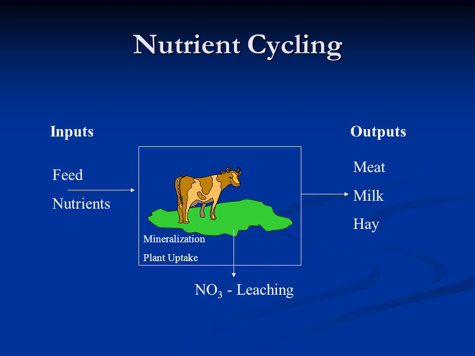 Nutrient Cycling Inputs Outputs Meat Milk Hay Feed Nutrients