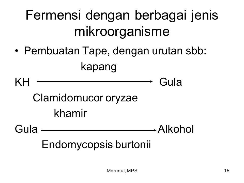 Fermensi dengan berbagai jenis mikroorganisme