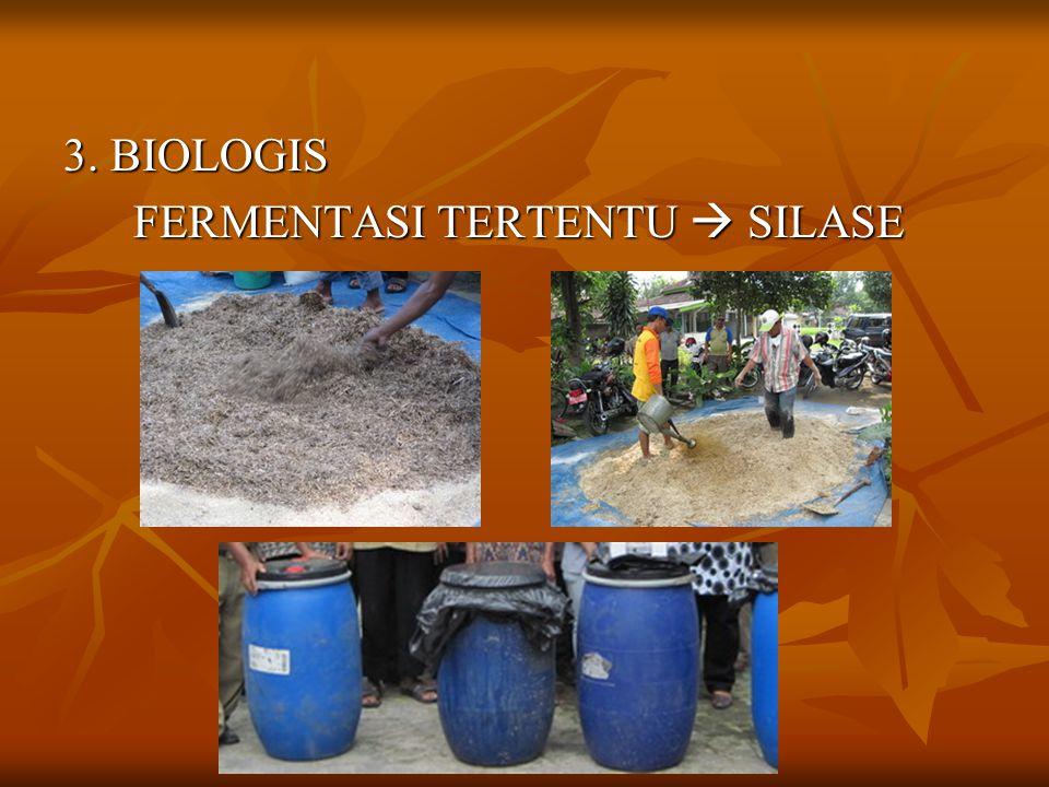 3. BIOLOGIS FERMENTASI TERTENTU  SILASE