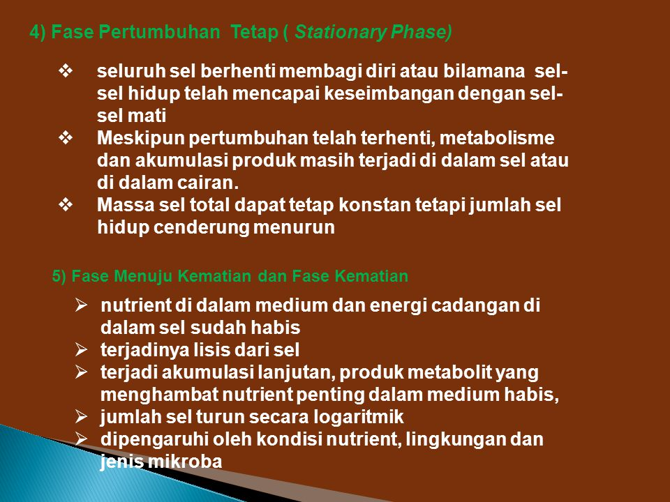 4) Fase Pertumbuhan Tetap ( Stationary Phase)