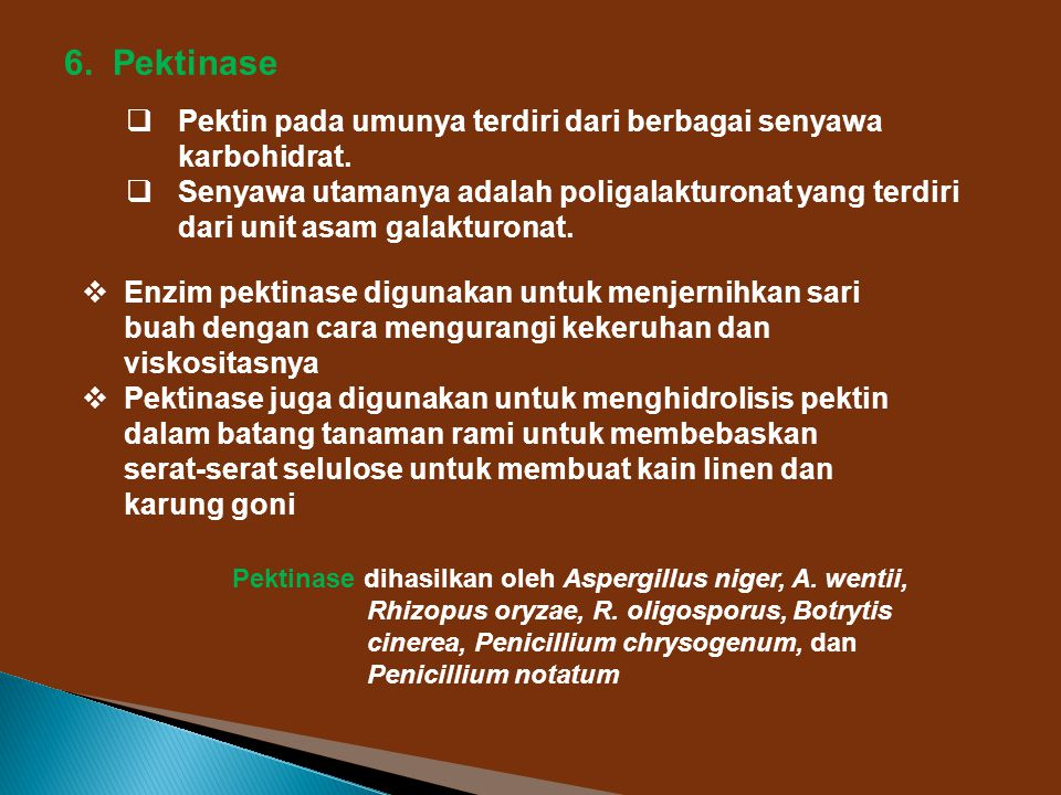 6. Pektinase Pektin pada umunya terdiri dari berbagai senyawa karbohidrat.