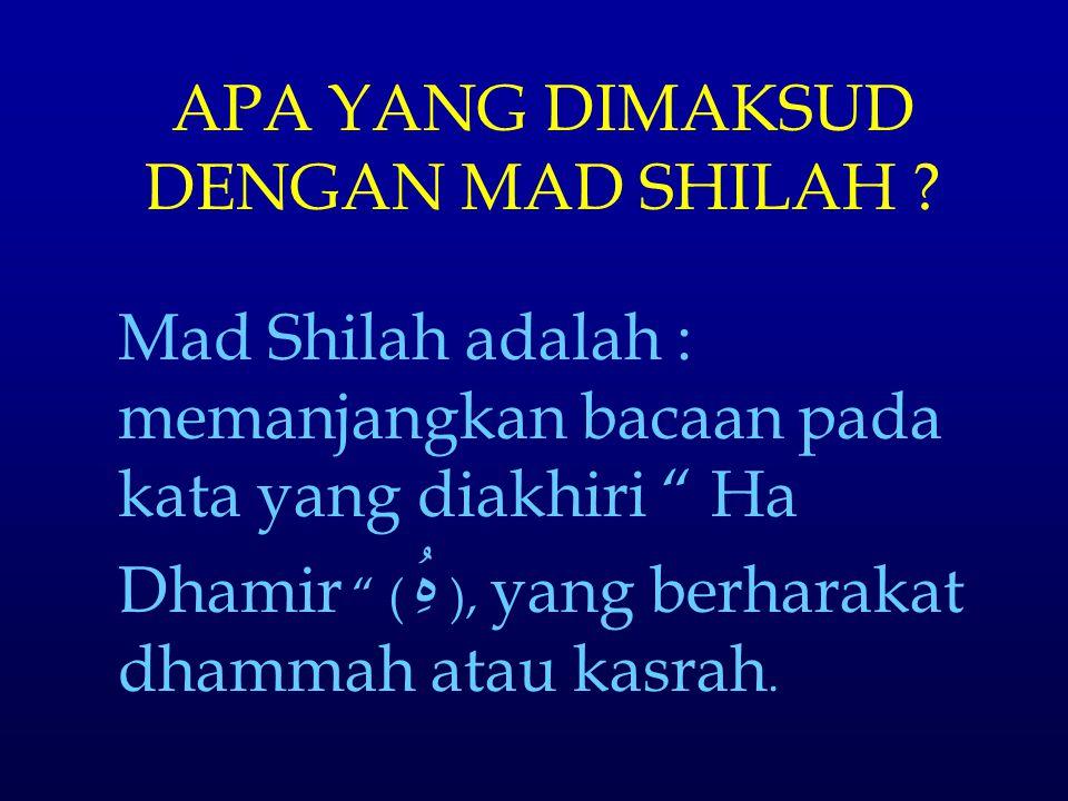APA YANG DIMAKSUD DENGAN MAD SHILAH