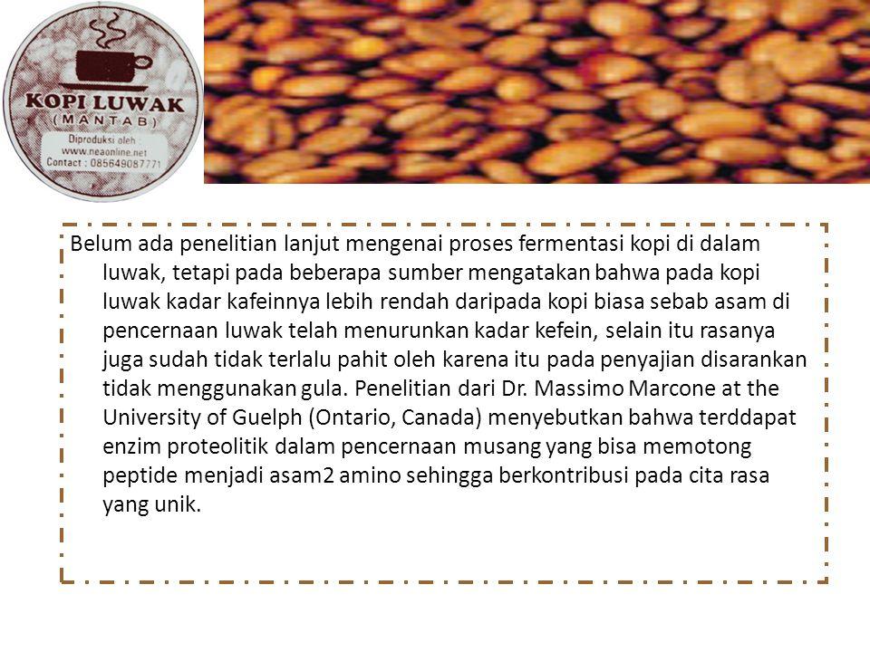 Belum ada penelitian lanjut mengenai proses fermentasi kopi di dalam luwak, tetapi pada beberapa sumber mengatakan bahwa pada kopi luwak kadar kafeinnya lebih rendah daripada kopi biasa sebab asam di pencernaan luwak telah menurunkan kadar kefein, selain itu rasanya juga sudah tidak terlalu pahit oleh karena itu pada penyajian disarankan tidak menggunakan gula.