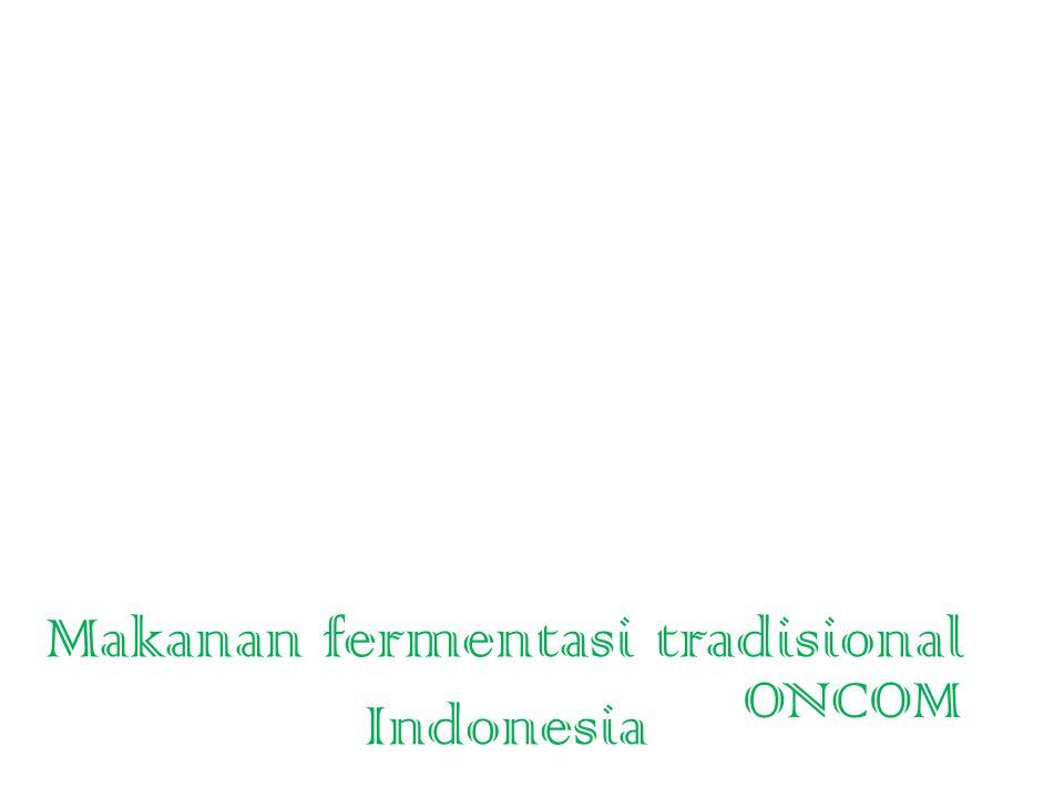 Makanan fermentasi tradisional Indonesia