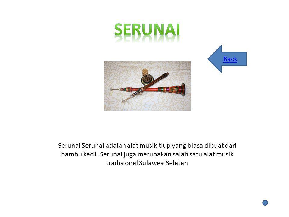 Serunai Back.