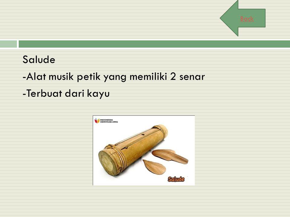 Salude -Alat musik petik yang memiliki 2 senar -Terbuat dari kayu