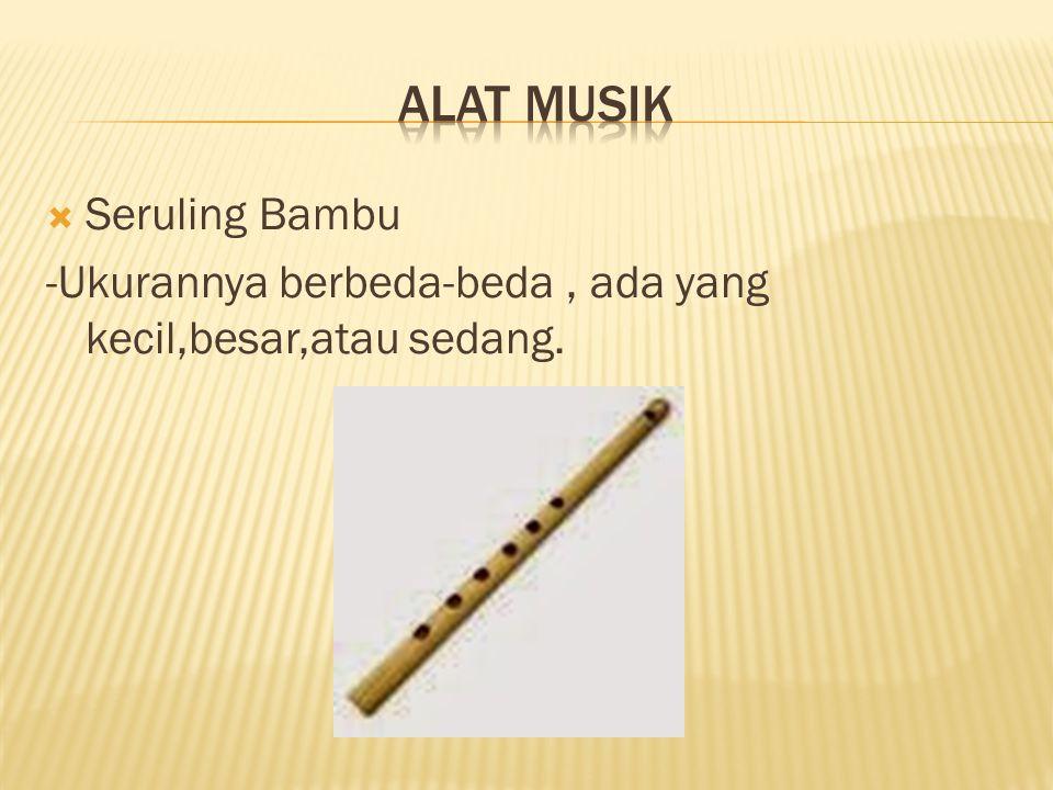 Alat MuSIK Seruling Bambu
