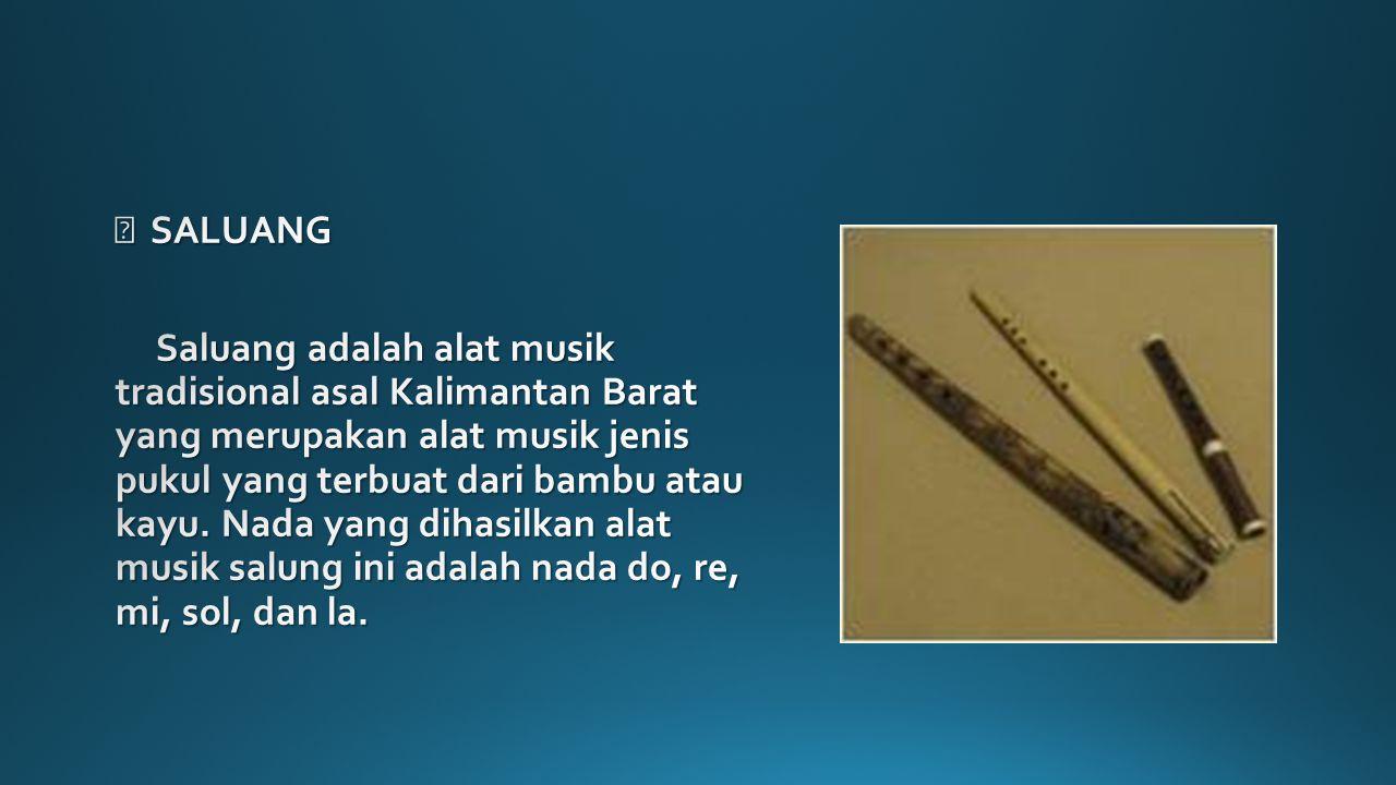  SALUANG Saluang adalah alat musik tradisional asal Kalimantan Barat yang merupakan alat musik jenis pukul yang terbuat dari bambu atau kayu.
