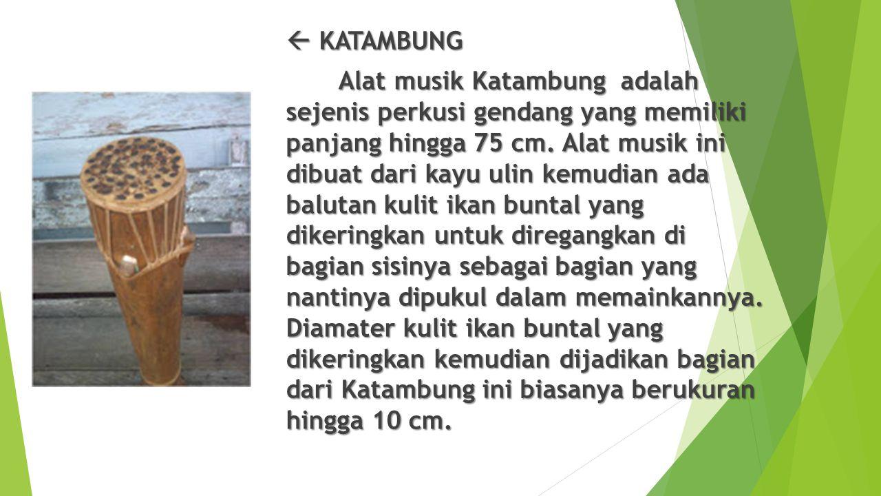  KATAMBUNG Alat musik Katambung adalah sejenis perkusi gendang yang memiliki panjang hingga 75 cm.