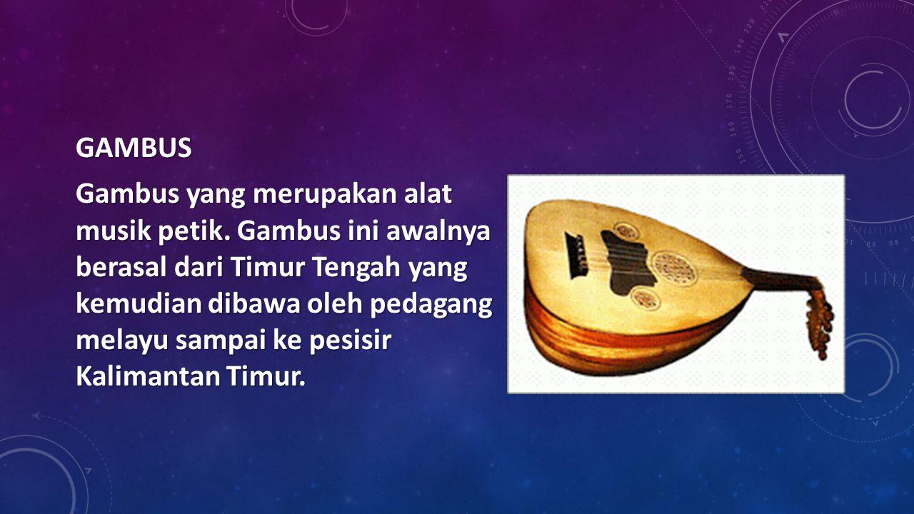 GAMBUS Gambus yang merupakan alat musik petik