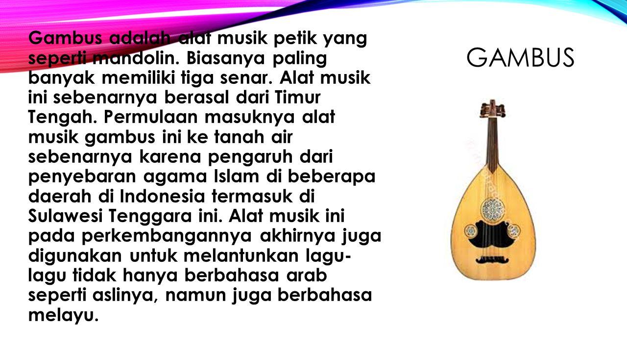 Gambus adalah alat musik petik yang seperti mandolin