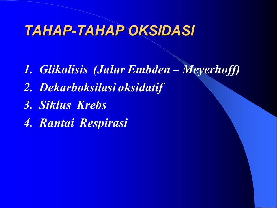 TAHAP-TAHAP OKSIDASI 1. Glikolisis (Jalur Embden – Meyerhoff)
