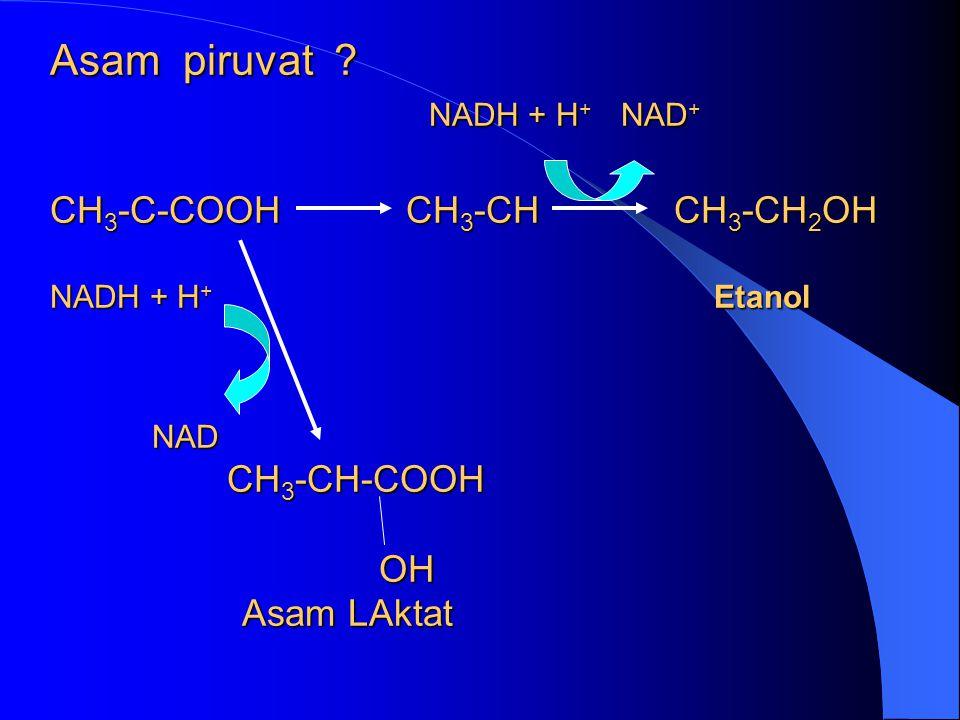 Asam piruvat. NADH + H+ NAD+. CH3-C-COOH CH3-CH CH3-CH2OH NADH + H+