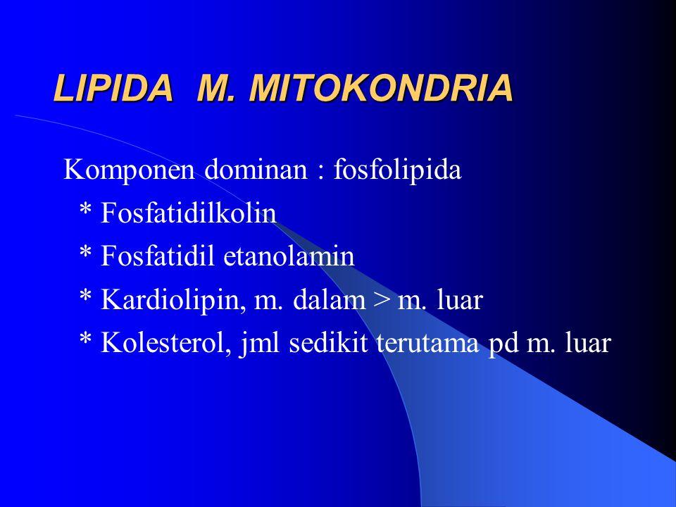 LIPIDA M. MITOKONDRIA Komponen dominan : fosfolipida * Fosfatidilkolin