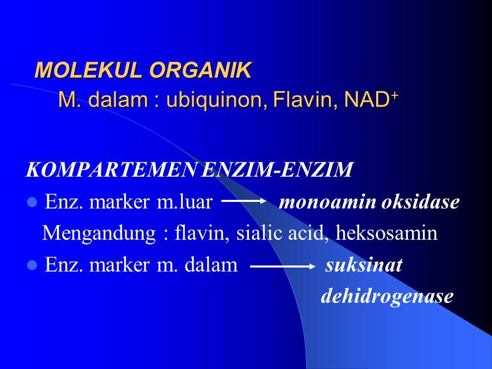 MOLEKUL ORGANIK M. dalam : ubiquinon, Flavin, NAD+