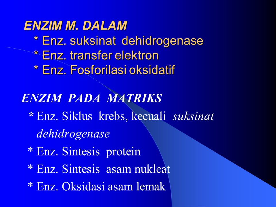 ENZIM M. DALAM. Enz. suksinat dehidrogenase. Enz. transfer elektron