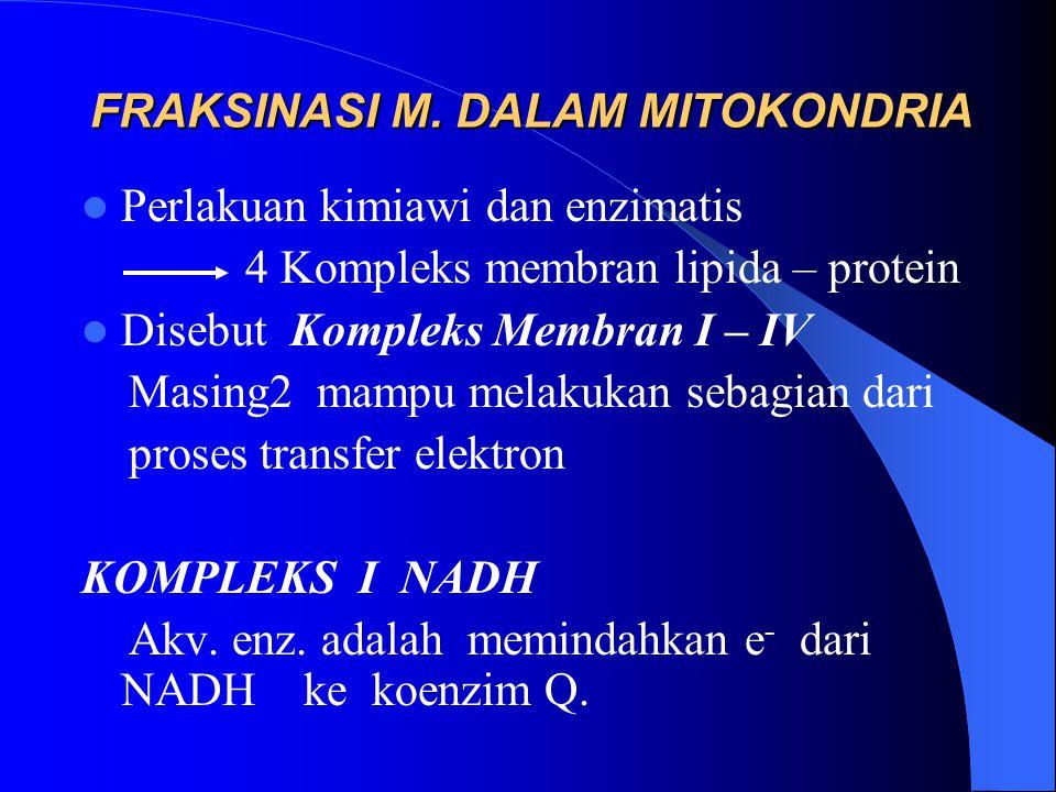 FRAKSINASI M. DALAM MITOKONDRIA