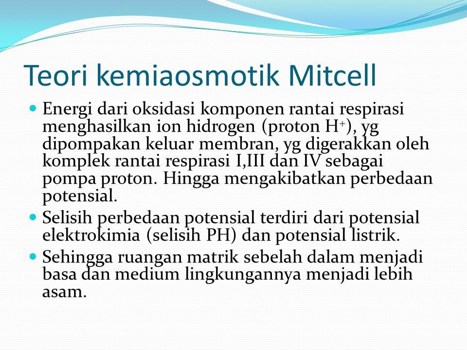Teori kemiaosmotik Mitcell