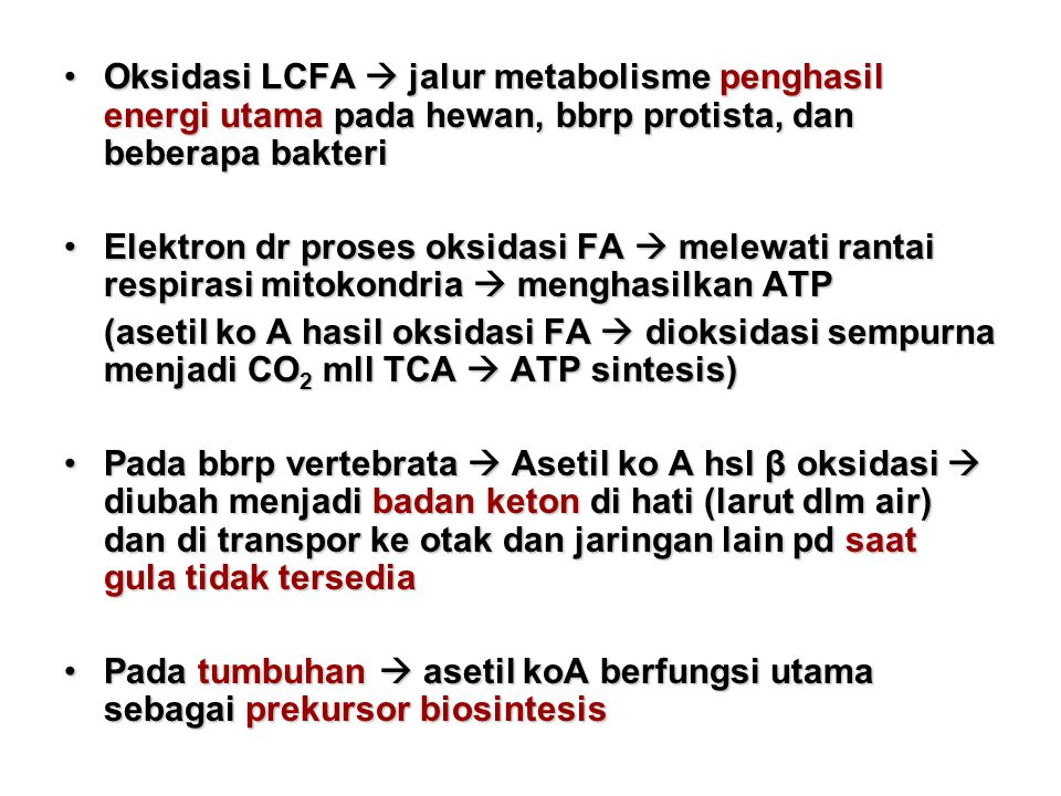 Oksidasi LCFA  jalur metabolisme penghasil energi utama pada hewan, bbrp protista, dan beberapa bakteri