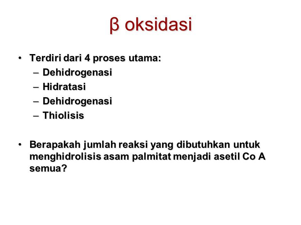 β oksidasi Terdiri dari 4 proses utama: Dehidrogenasi Hidratasi