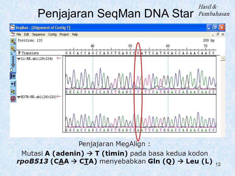 Penjajaran SeqMan DNA Star