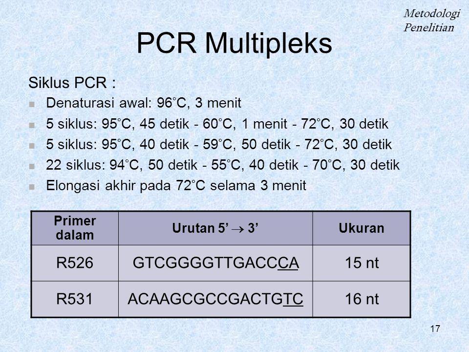 PCR Multipleks Siklus PCR : R526 GTCGGGGTTGACCCA 15 nt R531