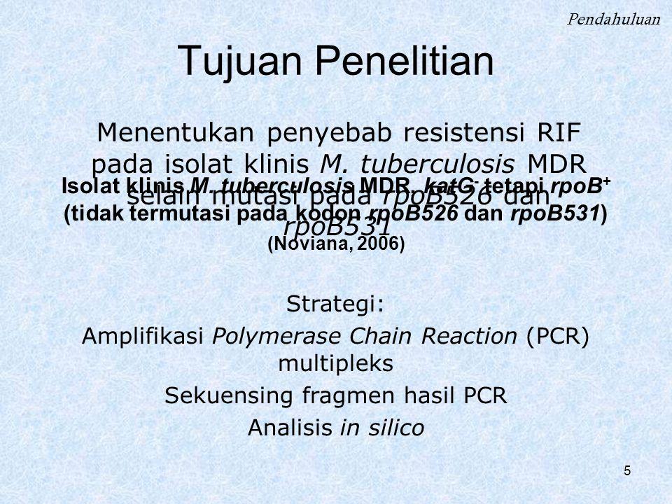 Pendahuluan Tujuan Penelitian. Menentukan penyebab resistensi RIF pada isolat klinis M. tuberculosis MDR selain mutasi pada rpoB526 dan rpoB531.