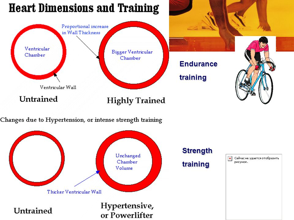 Endurance training Strength training