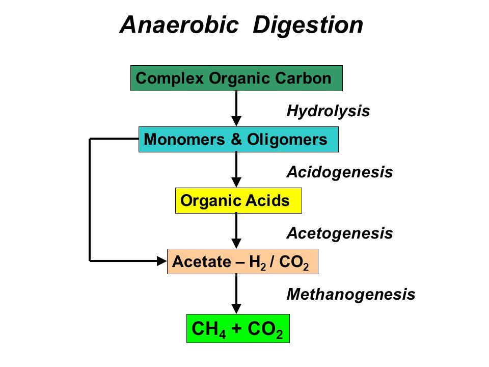 Anaerobic Digestion CH4 + CO2 Complex Organic Carbon Hydrolysis