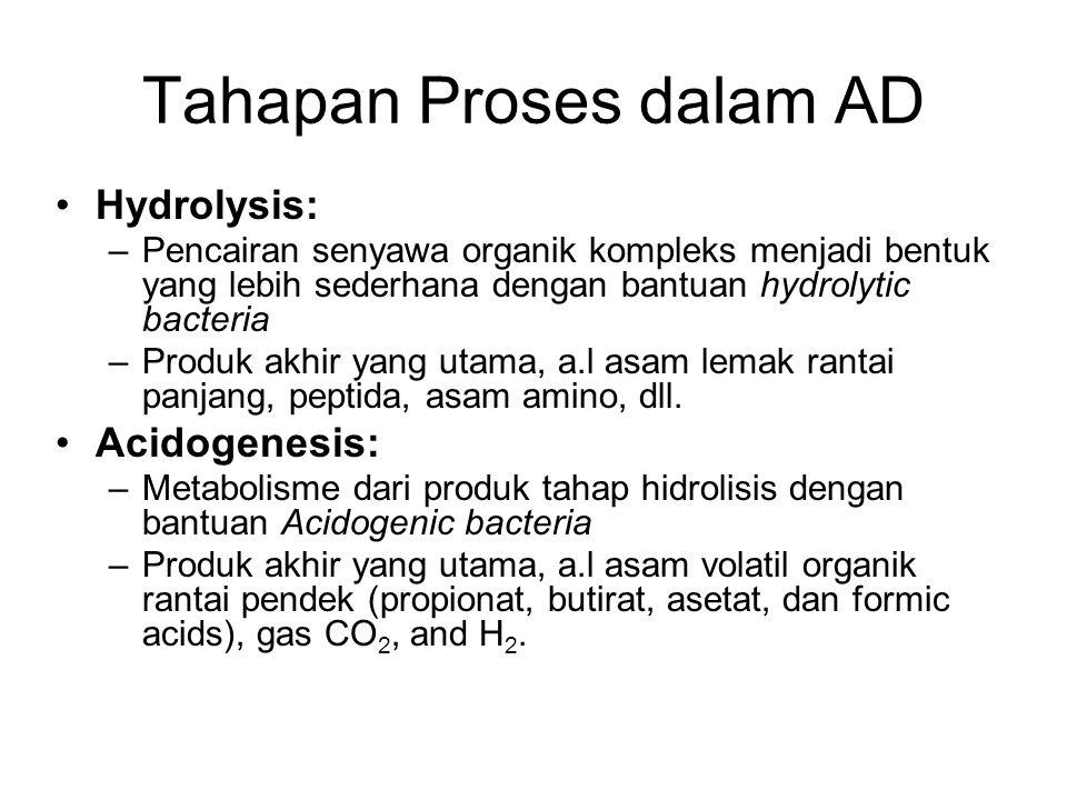 Tahapan Proses dalam AD