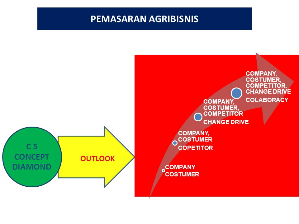 PEMASARAN AGRIBISNIS OUTLOOK COMPANY, COSTUMER COPETITOR