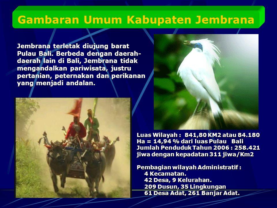 Gambaran Umum Kabupaten Jembrana