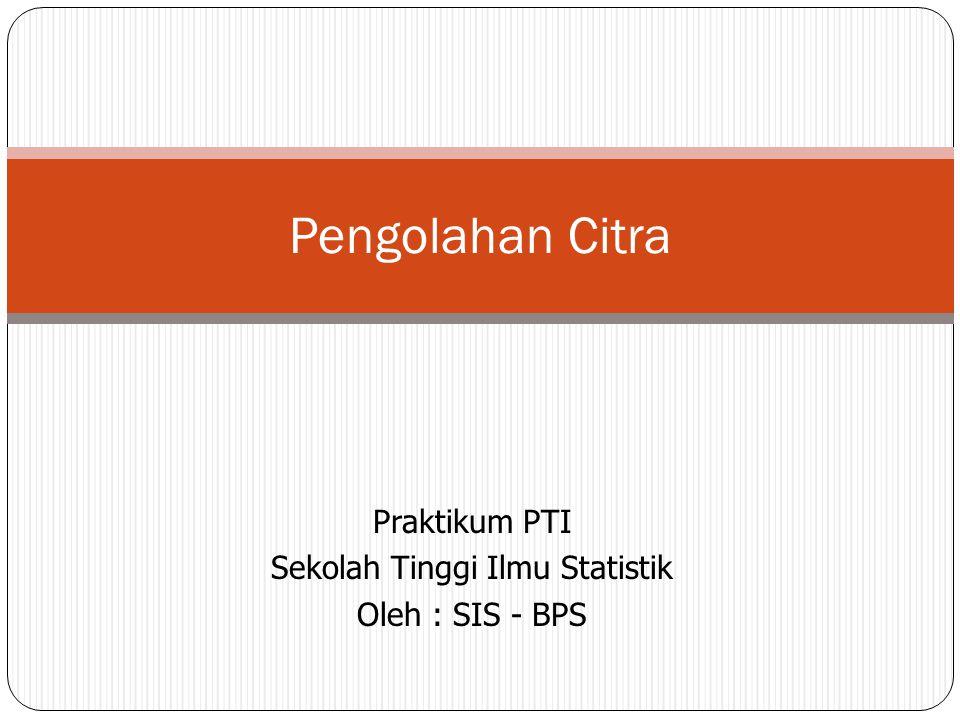 Praktikum PTI Sekolah Tinggi Ilmu Statistik Oleh : SIS - BPS