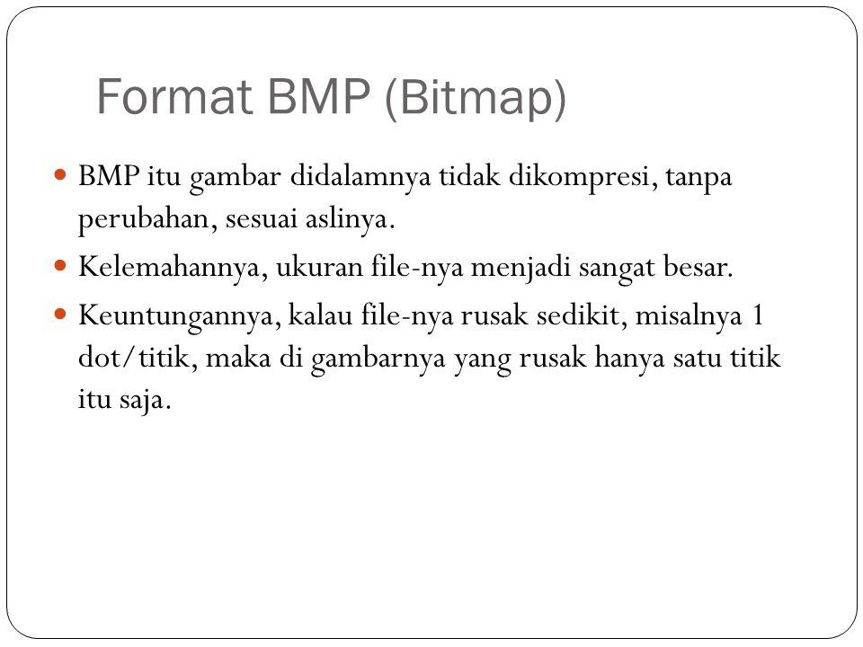 Format BMP (Bitmap) BMP itu gambar didalamnya tidak dikompresi, tanpa perubahan, sesuai aslinya.