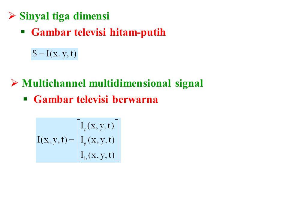 Sinyal tiga dimensi Gambar televisi hitam-putih. Multichannel multidimensional signal.