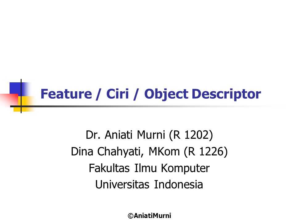 Feature / Ciri / Object Descriptor