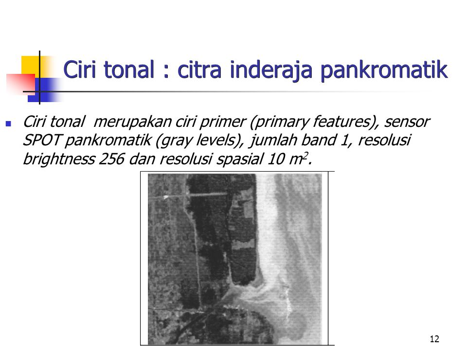 Ciri tonal : citra inderaja pankromatik