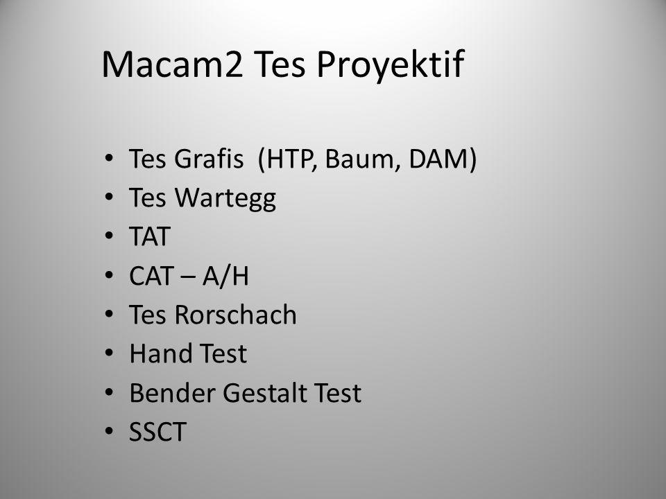 Macam2 Tes Proyektif Tes Grafis (HTP, Baum, DAM) Tes Wartegg TAT