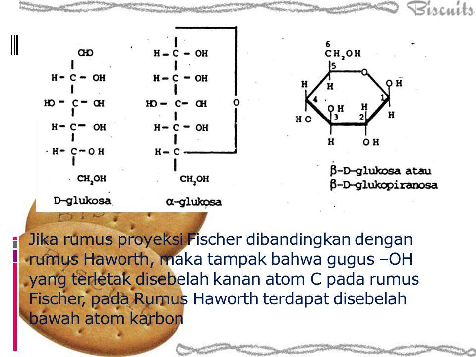 Jika rumus proyeksi Fischer dibandingkan dengan rumus Haworth, maka tampak bahwa gugus –OH yang terletak disebelah kanan atom C pada rumus Fischer, pada Rumus Haworth terdapat disebelah bawah atom karbon