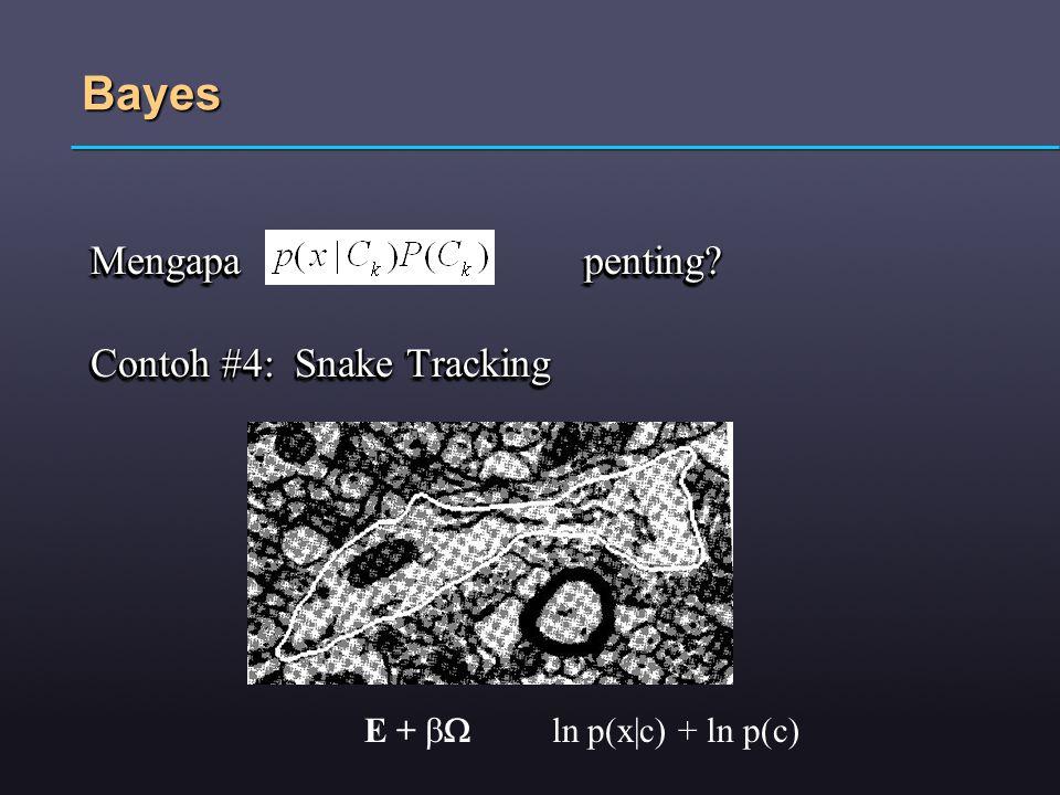 Bayes Mengapa penting Contoh #4: Snake Tracking