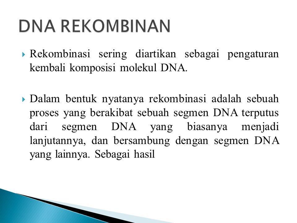 DNA REKOMBINAN Rekombinasi sering diartikan sebagai pengaturan kembali komposisi molekul DNA.